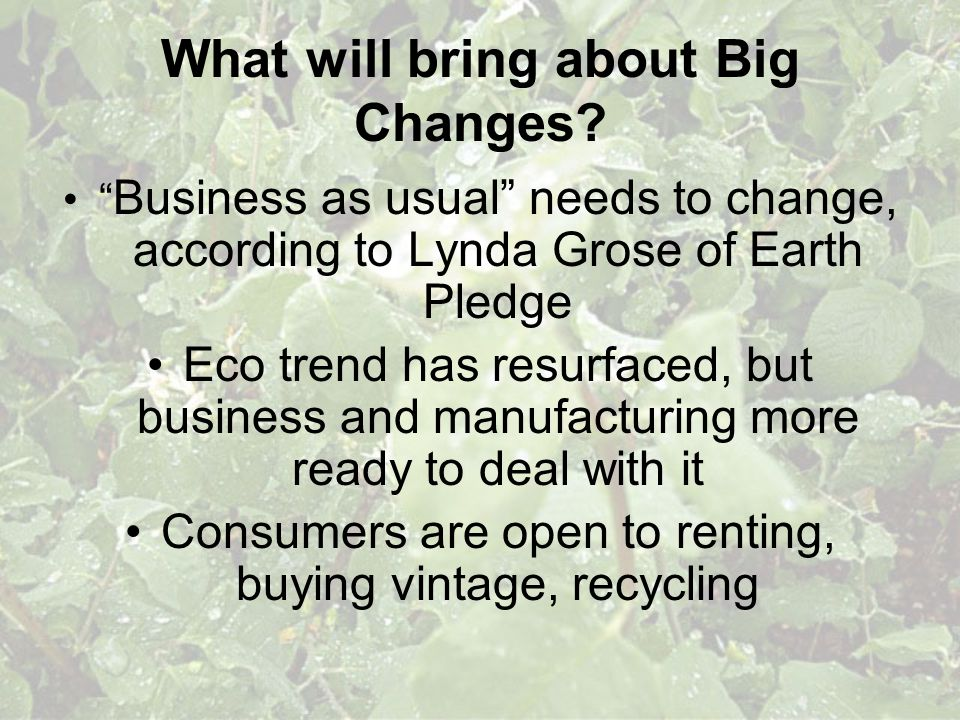 What will bring about Big Changes? Business as usual needs to change, according to Lynda Grose of Earth Pledge Eco trend has resurfaced, but business
