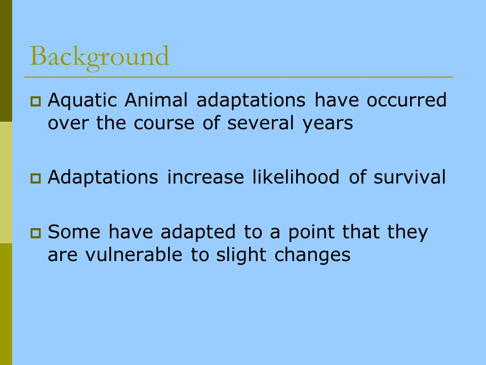 Background Aquatic Animal adaptations have occurred over the course of several years Adaptations increase likelihood of survival Some have adapted to