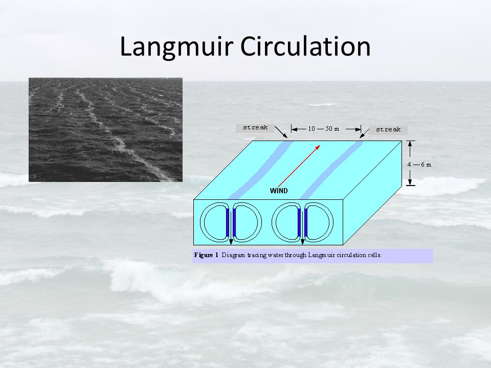 Langmuir Circulation
