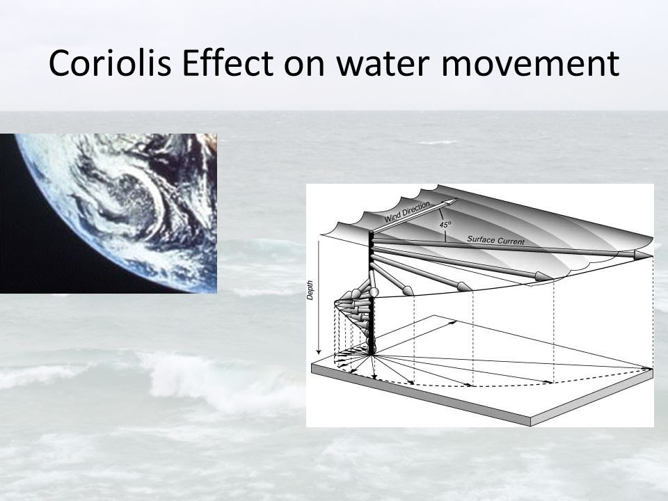 Coriolis Effect on water movement