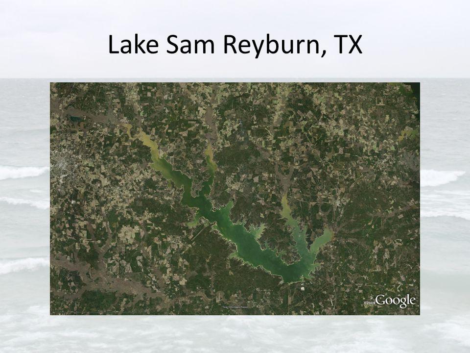 Lake Sam Reyburn, TX