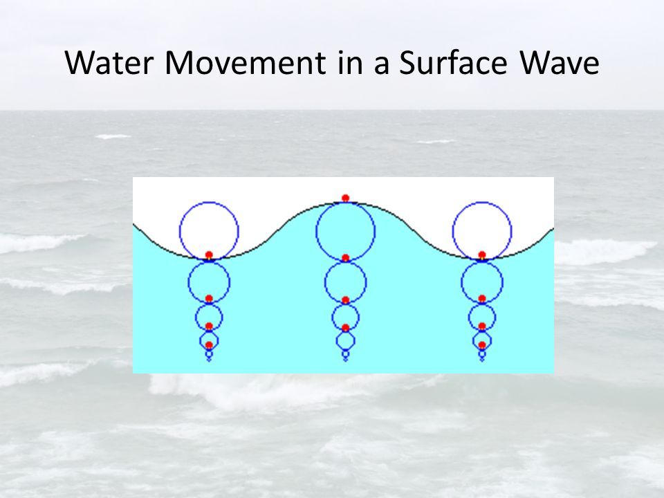 Shallow Water Waves