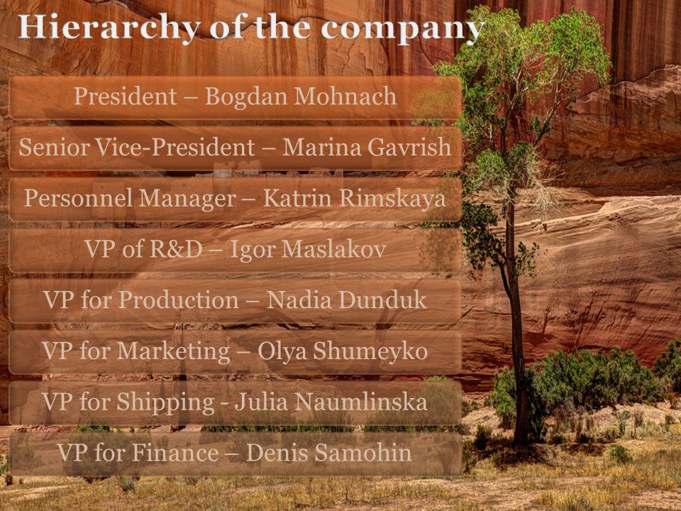 President – Bogdan MohnachSenior Vice-President – Marina GavrishPersonnel Manager – Katrin RimskayaVP of R&D – Igor MaslakovVP for Production – Nadia DundukVP for Marketing – Olya ShumeykoVP for Shipping - Julia NaumlinskaVP for Finance – Denis Samohin