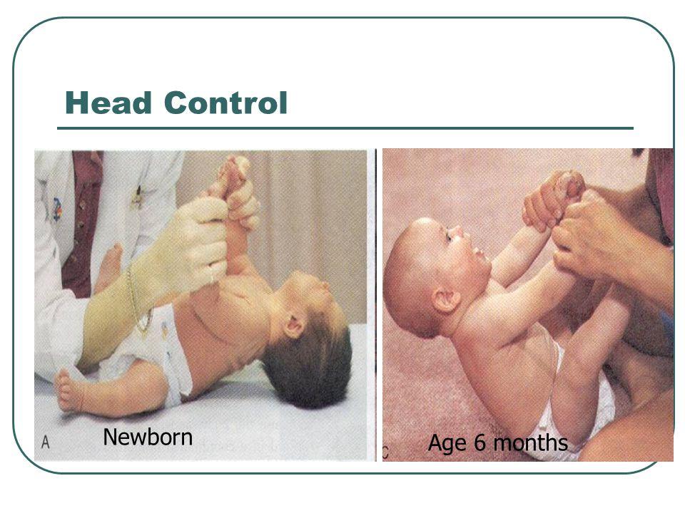 Head Control Newborn Age 6 months