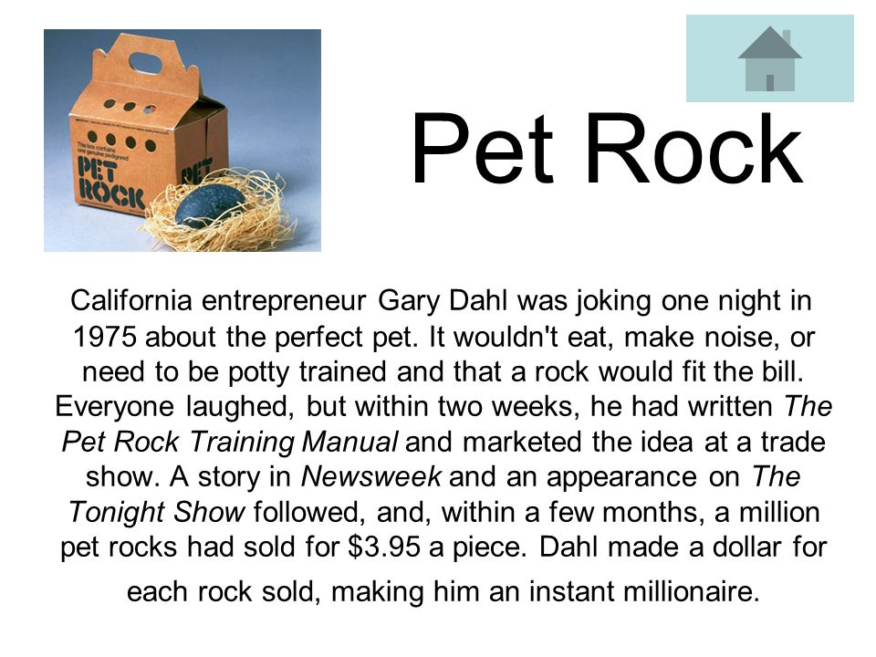 Pet Rock California entrepreneur Gary Dahl was joking one night in 1975 about the perfect pet.
