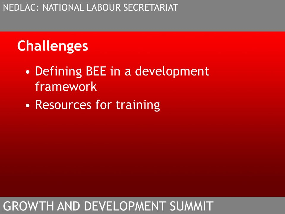 Challenges Defining BEE in a development framework Resources for training NEDLAC: NATIONAL LABOUR SECRETARIAT GROWTH AND DEVELOPMENT SUMMIT
