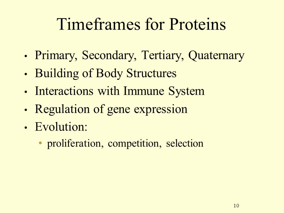 10 Timeframes for Proteins Primary, Secondary, Tertiary, Quaternary Building of Body Structures Interactions with Immune System Regulation of gene expression Evolution: proliferation, competition, selection