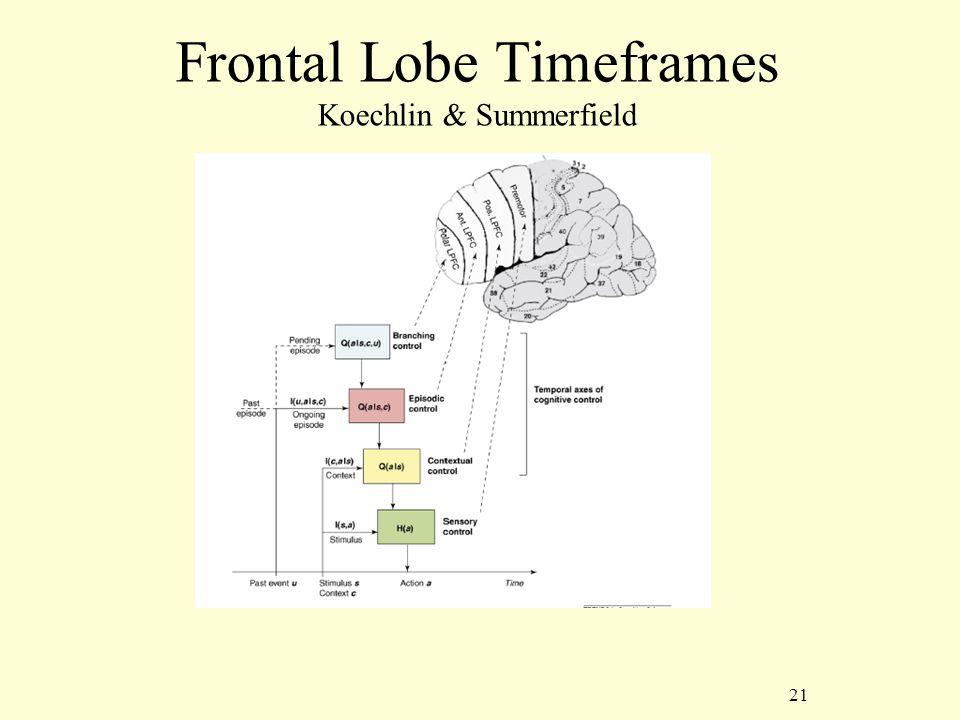 21 Frontal Lobe Timeframes Koechlin & Summerfield
