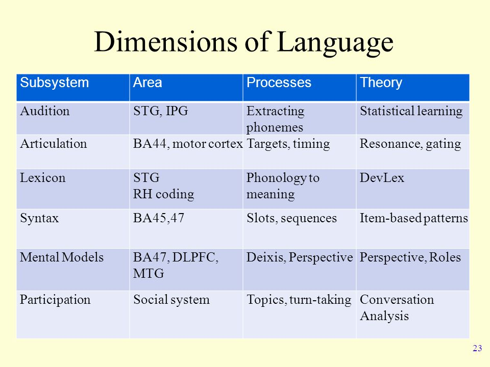 Dimensions of Language SubsystemAreaProcessesTheory AuditionSTG, IPGExtracting phonemes Statistical learning ArticulationBA44, motor cortexTargets, timingResonance, gating LexiconSTG RH coding Phonology to meaning DevLex SyntaxBA45,47Slots, sequencesItem-based patterns Mental ModelsBA47, DLPFC, MTG Deixis, PerspectivePerspective, Roles ParticipationSocial systemTopics, turn-takingConversation Analysis 23
