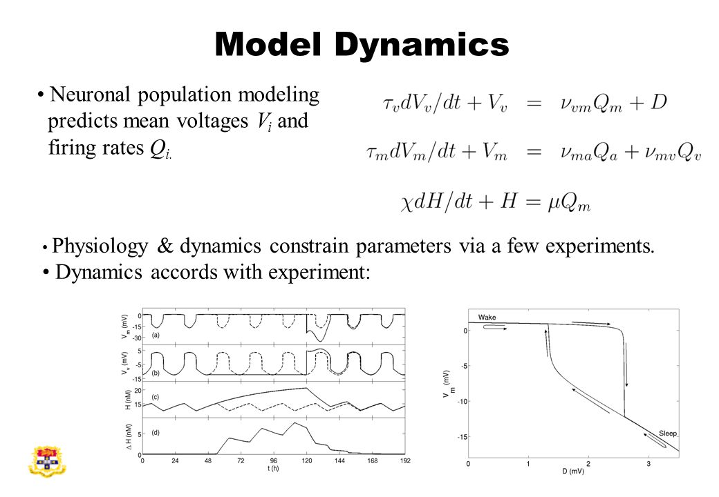 Model Dynamics Neuronal population modeling predicts mean voltages V i and firing rates Q i.