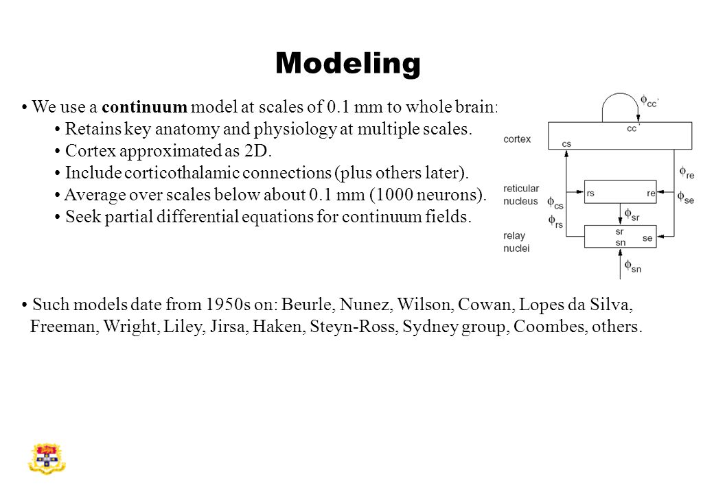Modeling We use a continuum model at scales of 0.1 mm to whole brain: Retains key anatomy and physiology at multiple scales.