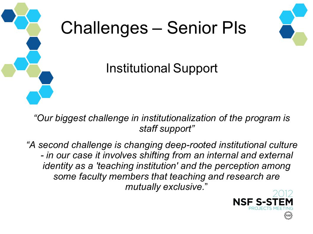 Challenges – Senior PIs Institutional Support Our biggest challenge in institutionalization of the program is staff support A second challenge is changing deep-rooted institutional culture - in our case it involves shifting from an internal and external identity as a teaching institution and the perception among some faculty members that teaching and research are mutually exclusive.