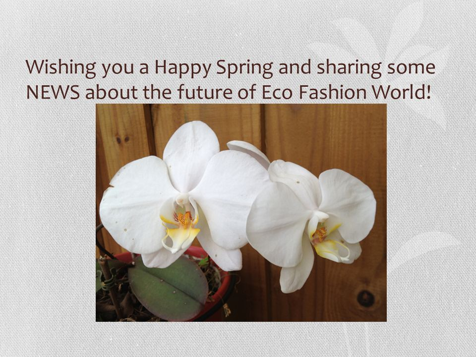 Wishing you a Happy Spring and sharing some NEWS about the future of Eco Fashion World!