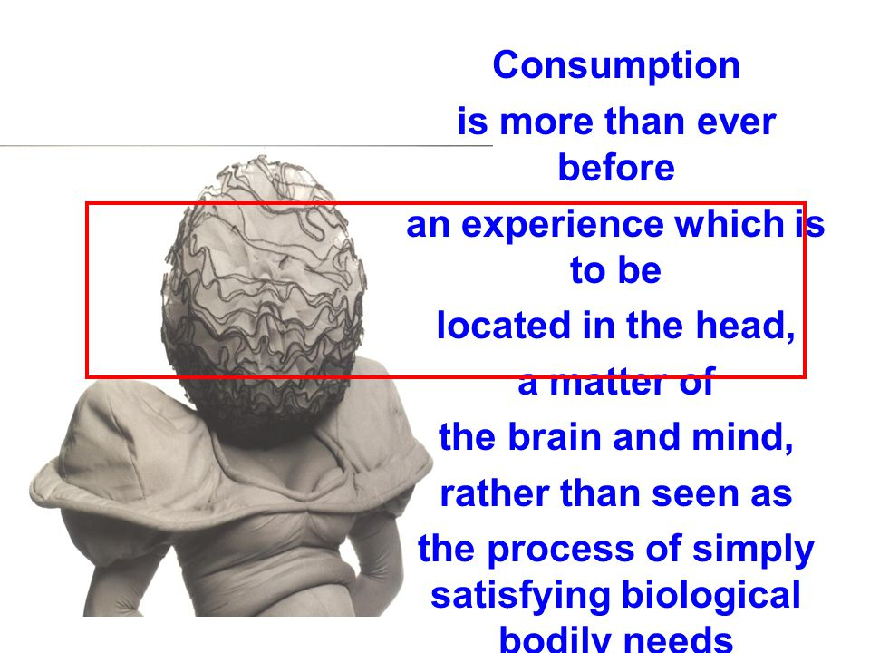 Consumption is more than ever before an experience which is to be located in the head, a matter of the brain and mind, rather than seen as the process