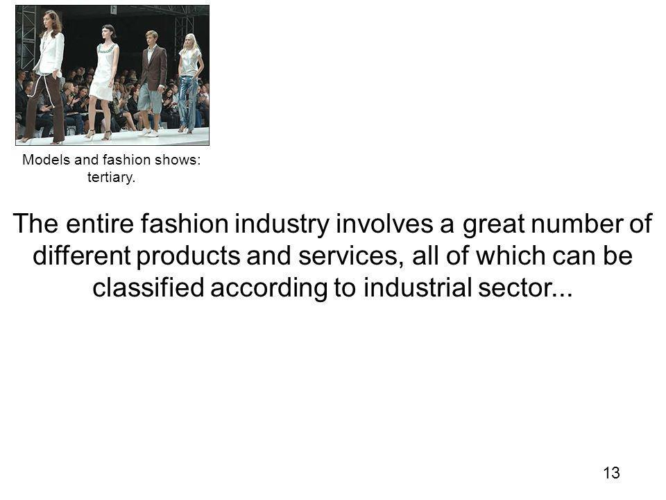 13 The entire fashion industry involves a great number of different products and services, all of which can be classified according to industrial sector...