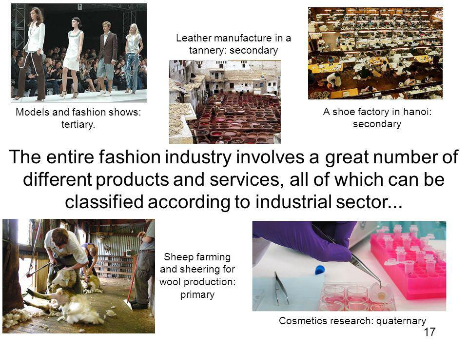 17 The entire fashion industry involves a great number of different products and services, all of which can be classified according to industrial sector...