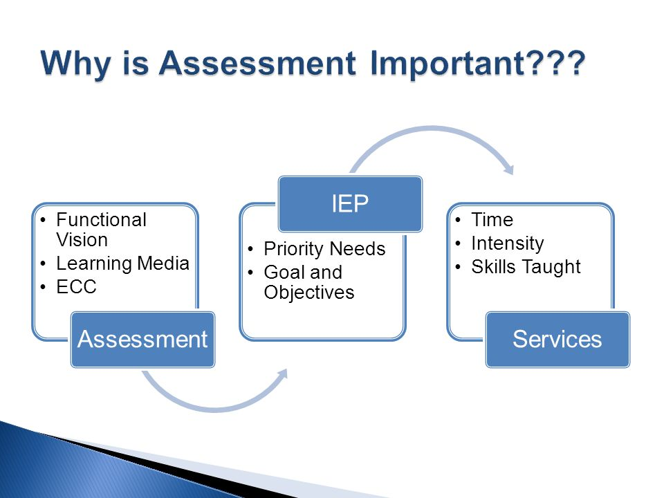 Functional Vision Learning Media ECC Assessment Priority Needs Goal and Objectives IEP Time Intensity Skills Taught Services