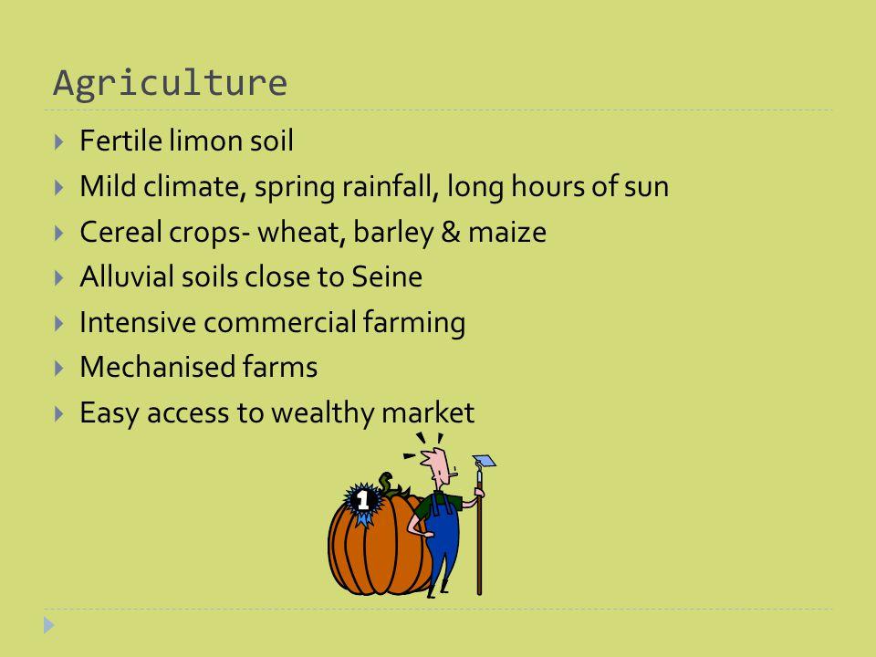 Important Factors Fertile soil Mild Climate Low-lying relief Educated farmers Proximity to wealthy urban market