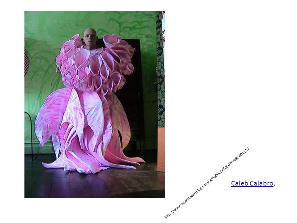 http://www.wearableartblog.com/.a/6a00e54fd5676f88340115700e5331970c-320wi Caleb CalabroCaleb Calabro,