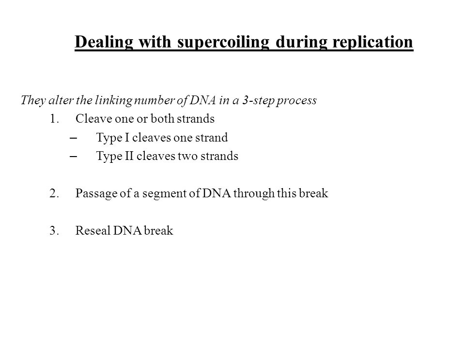 Dealing with supercoiling during replication They alter the linking number of DNA in a 3-step process 1.Cleave one or both strands – Type I cleaves on