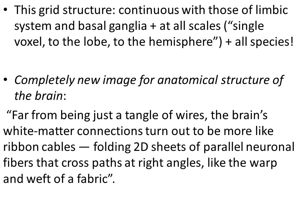 This grid structure: continuous with those of limbic system and basal ganglia + at all scales (single voxel, to the lobe, to the hemisphere) + all spe