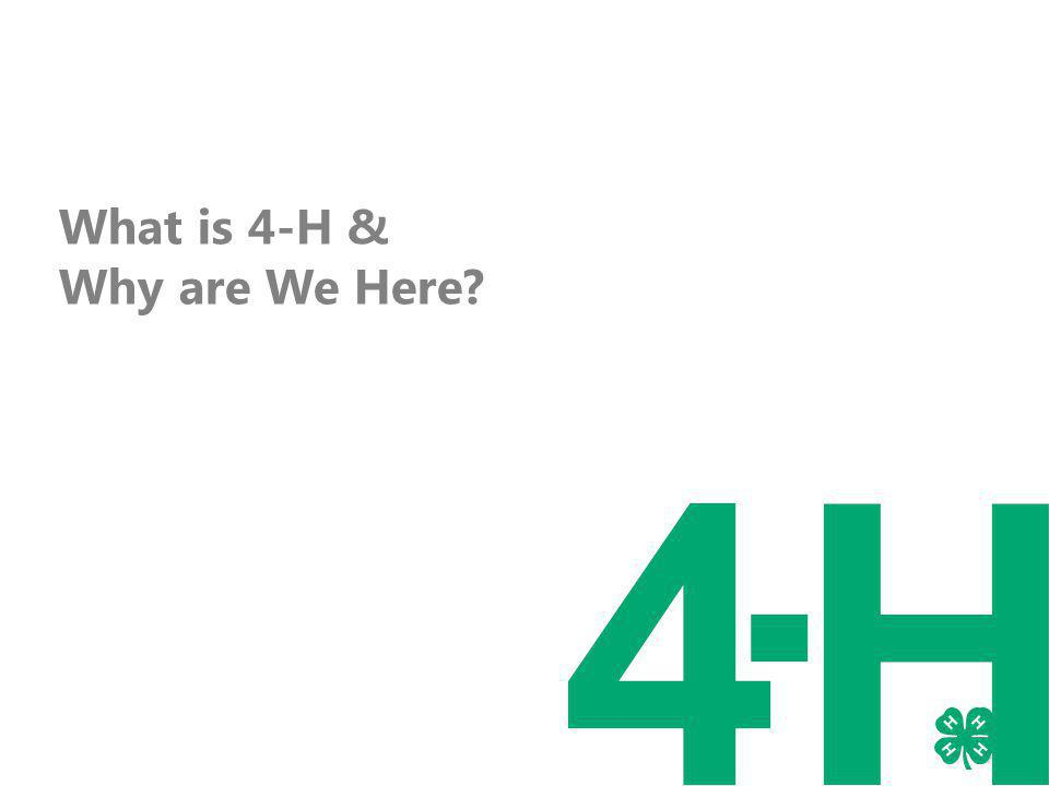 What is 4-H & Why are We Here?