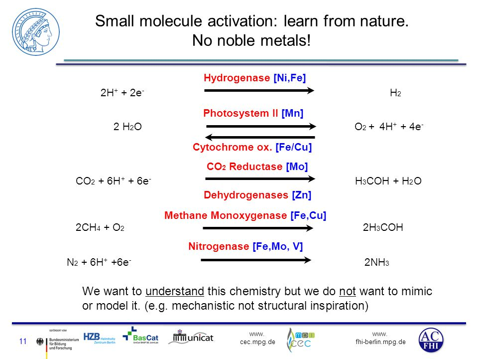 www. fhi-berlin.mpg.de www. cec.mpg.de Small molecule activation: learn from nature. No noble metals! 11 We want to understand this chemistry but we d