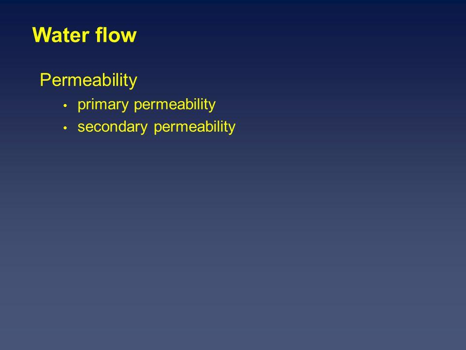 Water flow Permeability primary permeability secondary permeability