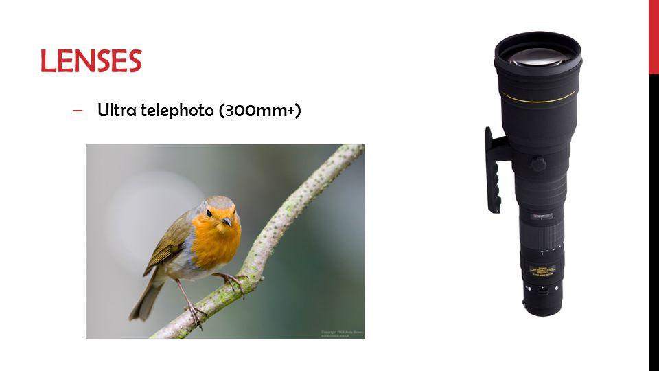 LENSES –Ultra telephoto (300mm+)