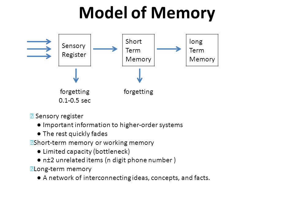 Model of Memory Sensory Register Short Term Memory long Term Memory forgetting 0.1-0.5 sec forgetting Sensory register Important information to higher