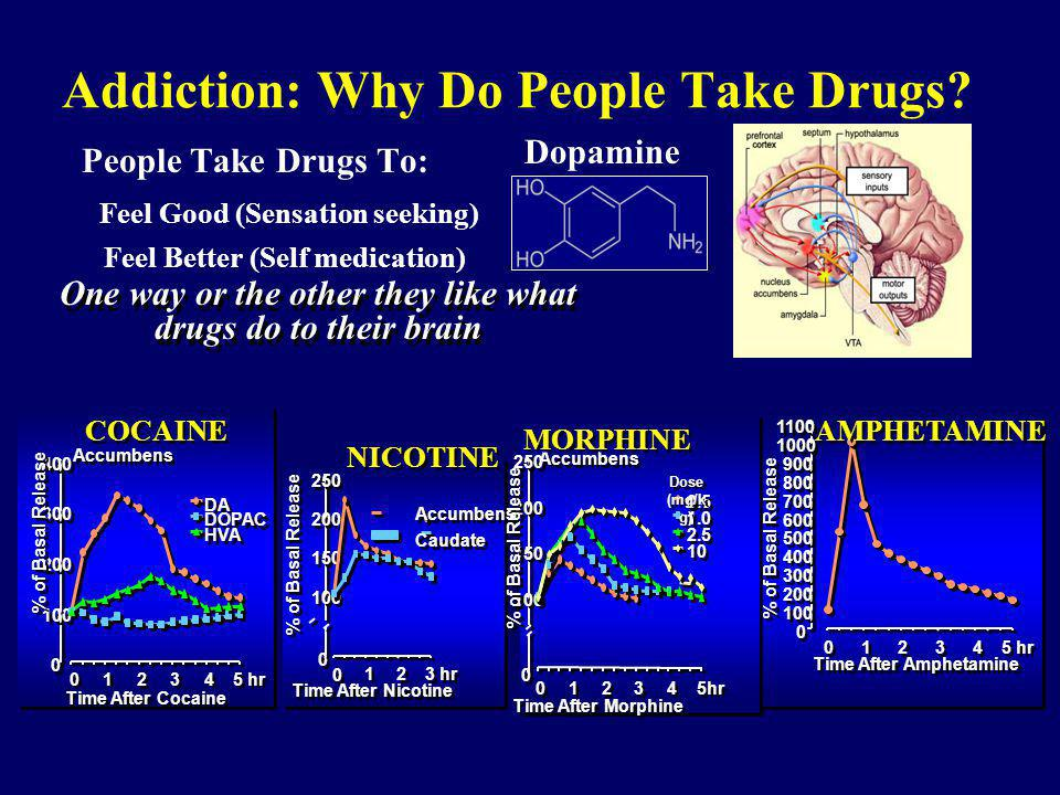 Addiction: Why Do People Take Drugs? People Take Drugs To: Feel Good (Sensation seeking) Feel Better (Self medication) One way or the other they like
