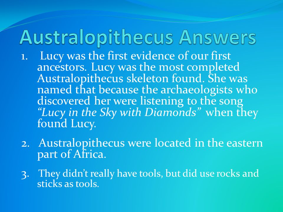 1. Lucy was the first evidence of our first ancestors. Lucy was the most completed Australopithecus skeleton found. She was named that because the arc