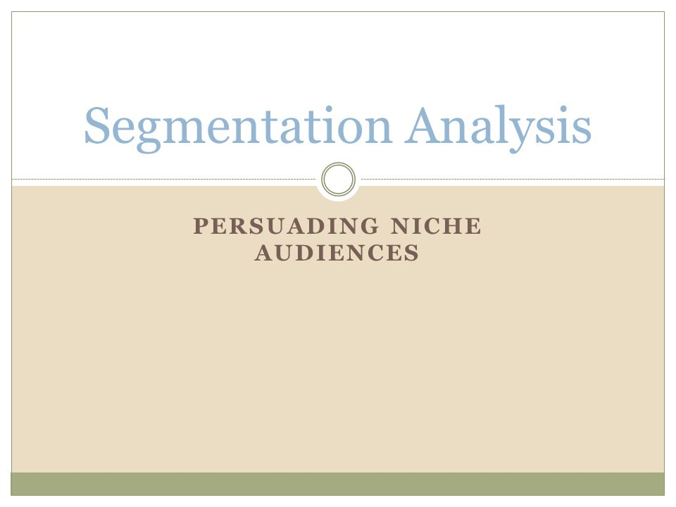 PERSUADING NICHE AUDIENCES Segmentation Analysis