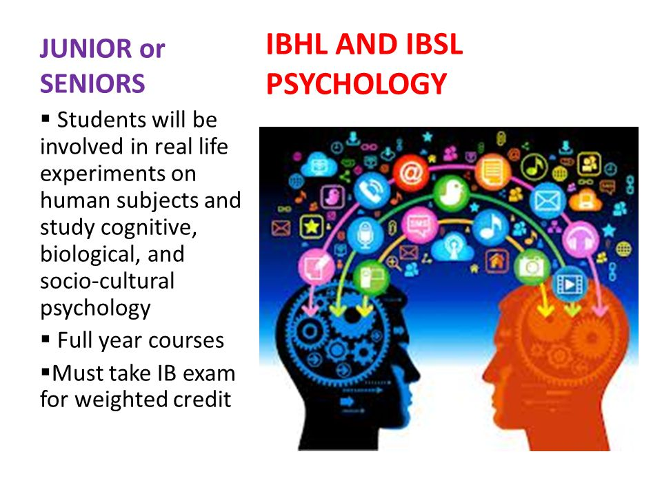 JUNIOR or SENIORS IBHL AND IBSL PSYCHOLOGY Students will be involved in real life experiments on human subjects and study cognitive, biological, and socio-cultural psychology Full year courses Must take IB exam for weighted credit
