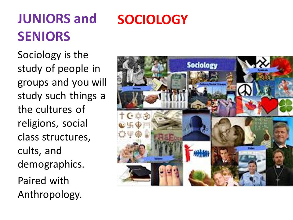 JUNIORS and SENIORS SOCIOLOGY Sociology is the study of people in groups and you will study such things a the cultures of religions, social class structures, cults, and demographics.