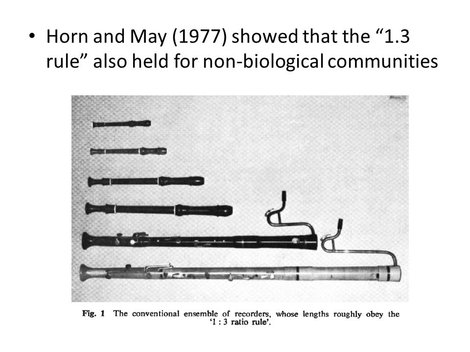 Horn and May (1977) showed that the 1.3 rule also held for non-biological communities