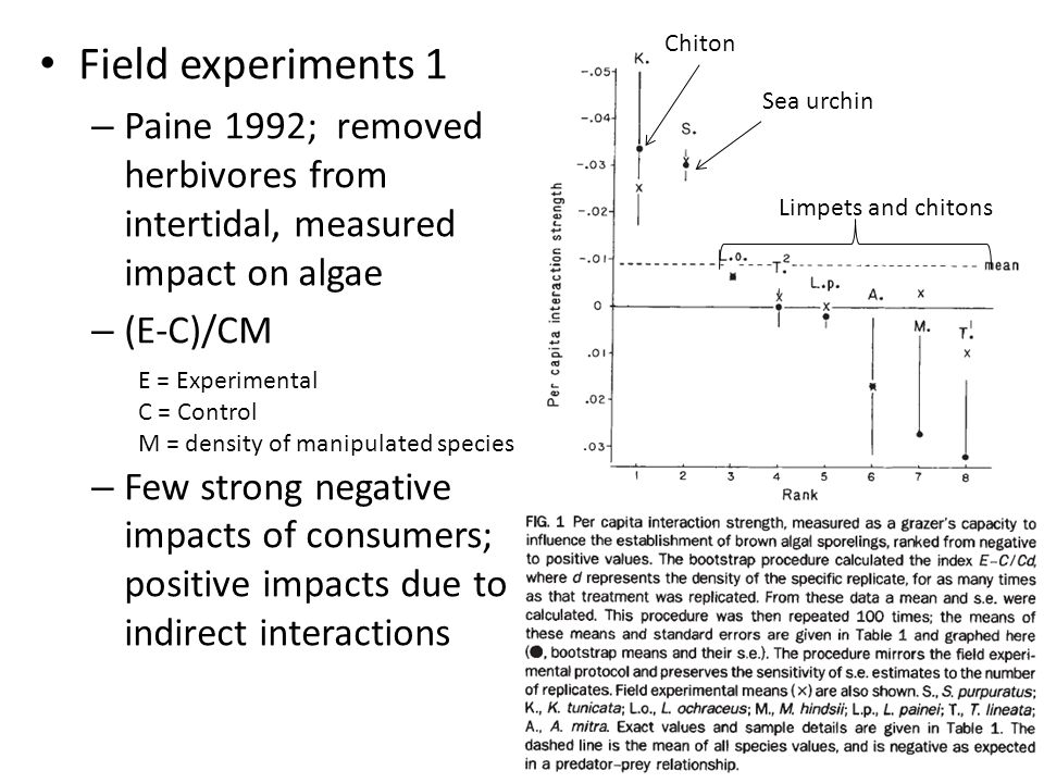 Field experiments 1 – Paine 1992; removed herbivores from intertidal, measured impact on algae – (E-C)/CM – Few strong negative impacts of consumers;