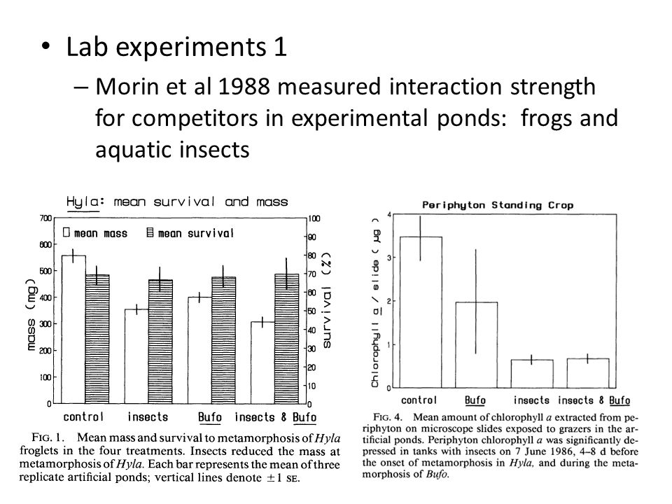 Lab experiments 1 – Morin et al 1988 measured interaction strength for competitors in experimental ponds: frogs and aquatic insects