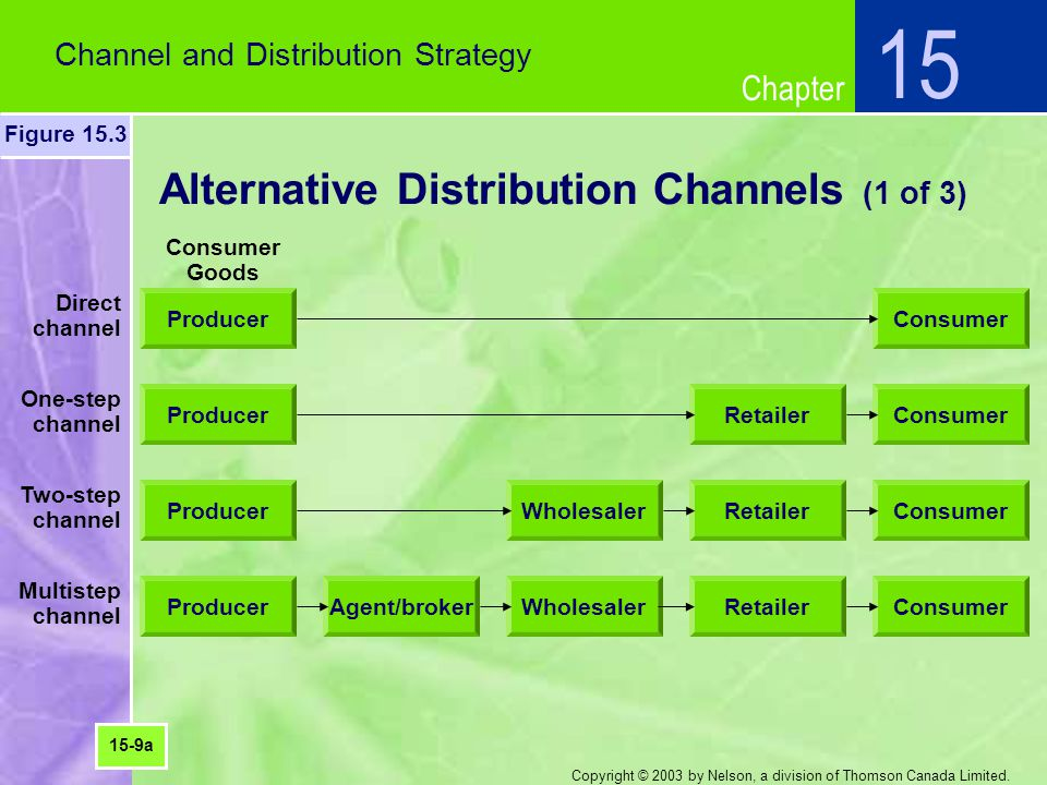 Chapter Copyright © 2003 by Nelson, a division of Thomson Canada Limited. Alternative Distribution Channels (1 of 3) Channel and Distribution Strategy