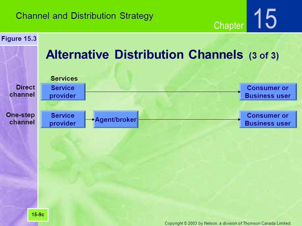 Chapter Copyright © 2003 by Nelson, a division of Thomson Canada Limited. Alternative Distribution Channels (3 of 3) Channel and Distribution Strategy