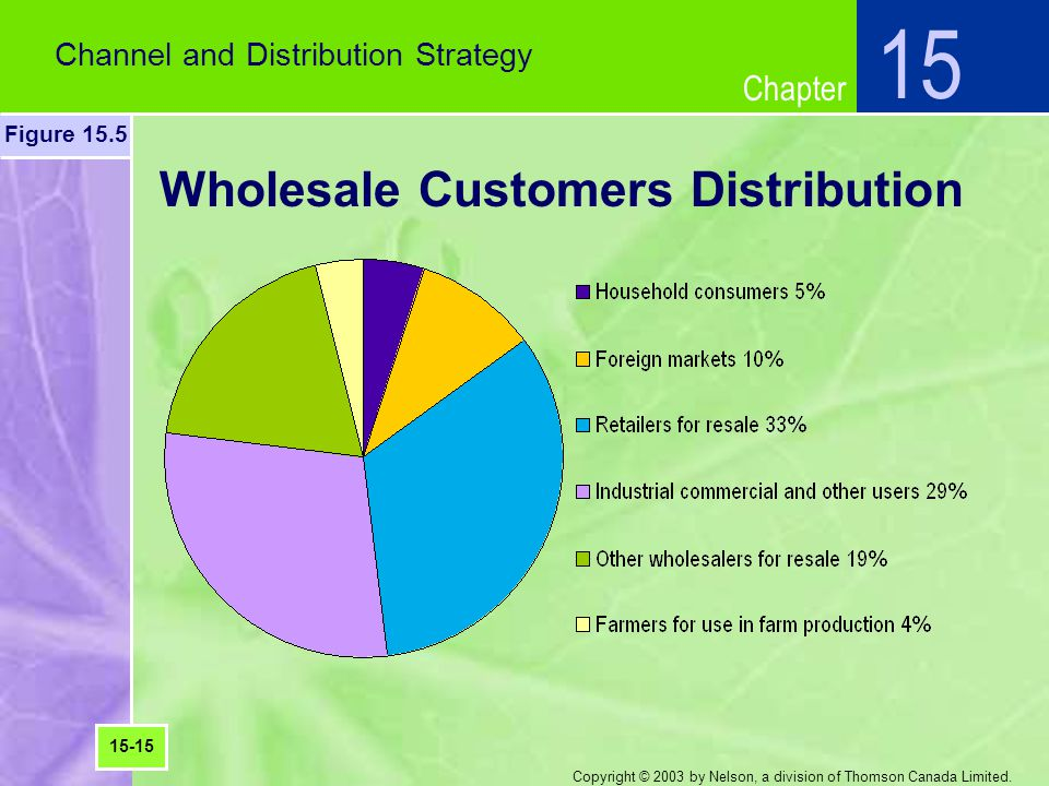 Chapter Copyright © 2003 by Nelson, a division of Thomson Canada Limited. Wholesale Customers Distribution Channel and Distribution Strategy 15 Figure