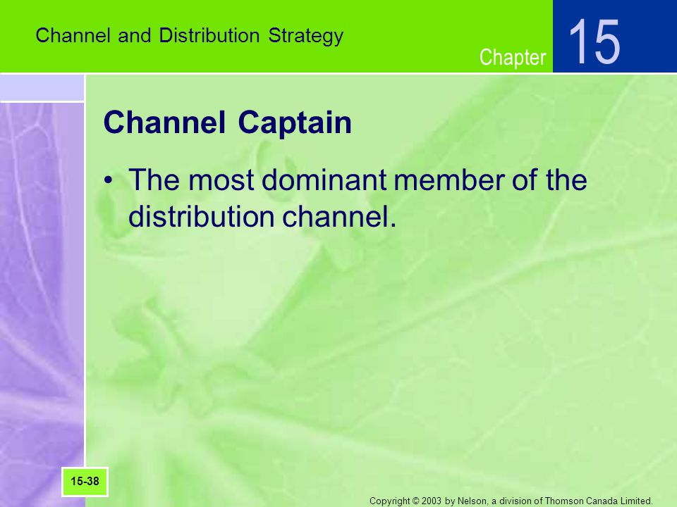 Chapter Copyright © 2003 by Nelson, a division of Thomson Canada Limited. Channel Captain The most dominant member of the distribution channel. Channe