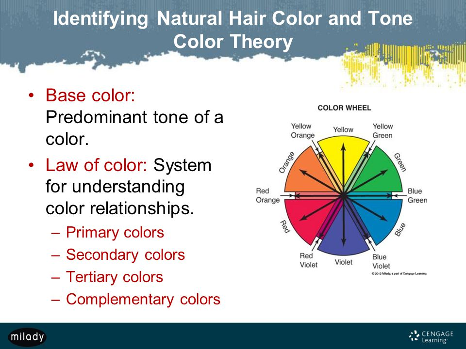 Identifying Natural Hair Color and Tone Color Theory Base color: Predominant tone of a color.