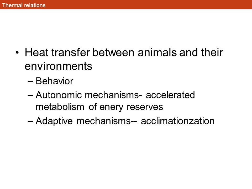 Heat transfer Heat transfer depends on 3 factors Surface area– small vs large animals Temperature difference between body (T b ) and ambient (T a ) Special heat conductance of the animals surface (amount of insulation)