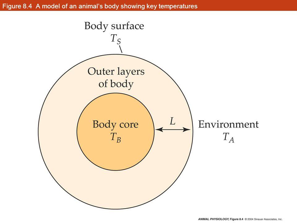 Figure 8.33 Two types of seasonal acclimatization (Part 1)