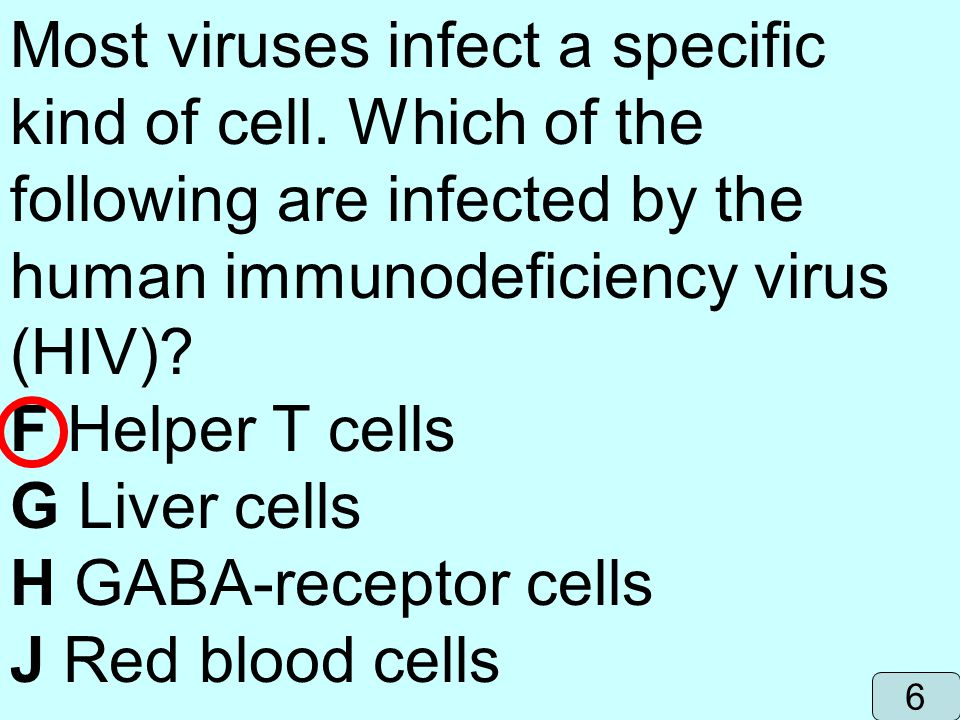 Most viruses infect a specific kind of cell. Which of the following are infected by the human immunodeficiency virus (HIV)? F Helper T cells G Liver c