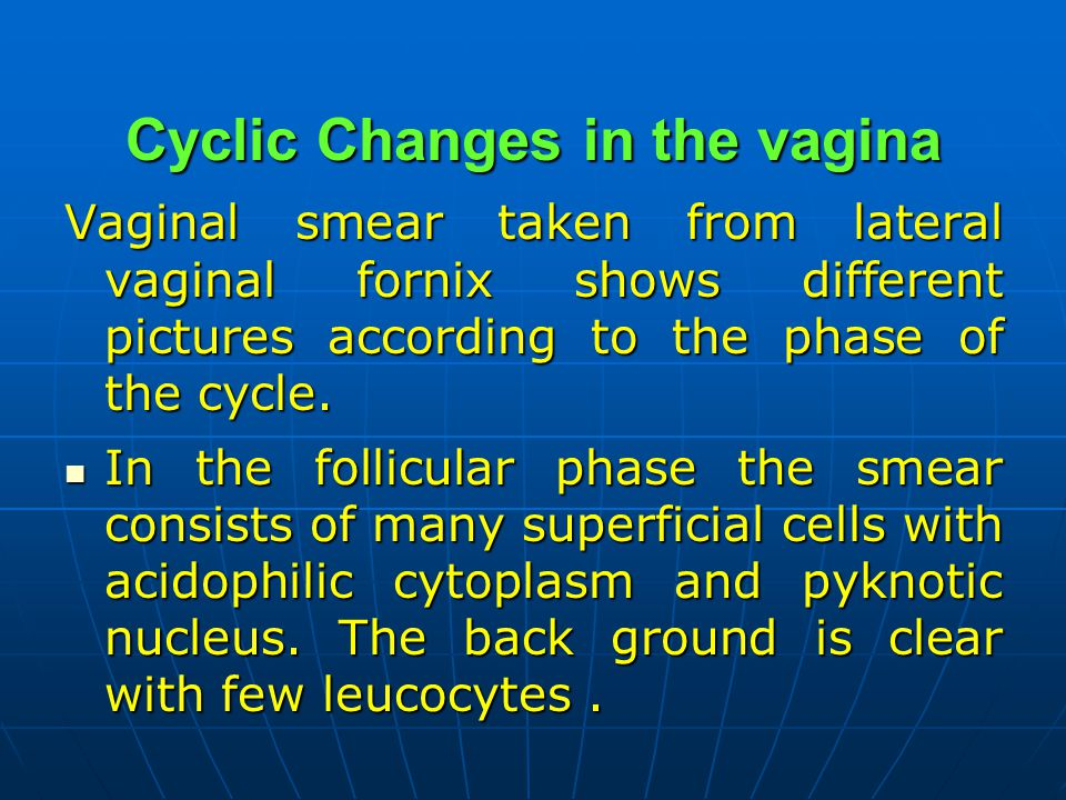 Cyclic Changes in the vagina Vaginal smear taken from lateral vaginal fornix shows different pictures according to the phase of the cycle. In the foll