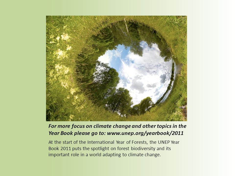 For more focus on climate change and other topics in the Year Book please go to: www.unep.org/yearbook/2011 At the start of the International Year of Forests, the UNEP Year Book 2011 puts the spotlight on forest biodiversity and its important role in a world adapting to climate change.
