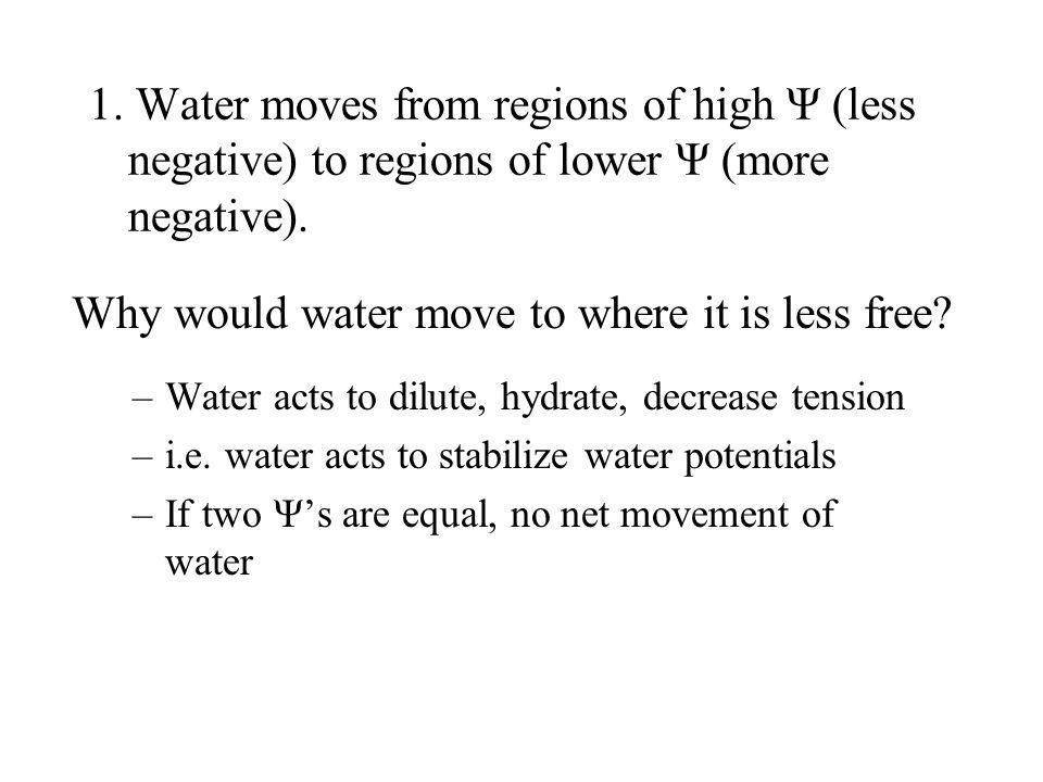 1. Water moves from regions of high Ψ (less negative) to regions of lower Ψ (more negative). Why would water move to where it is less free? –Water act