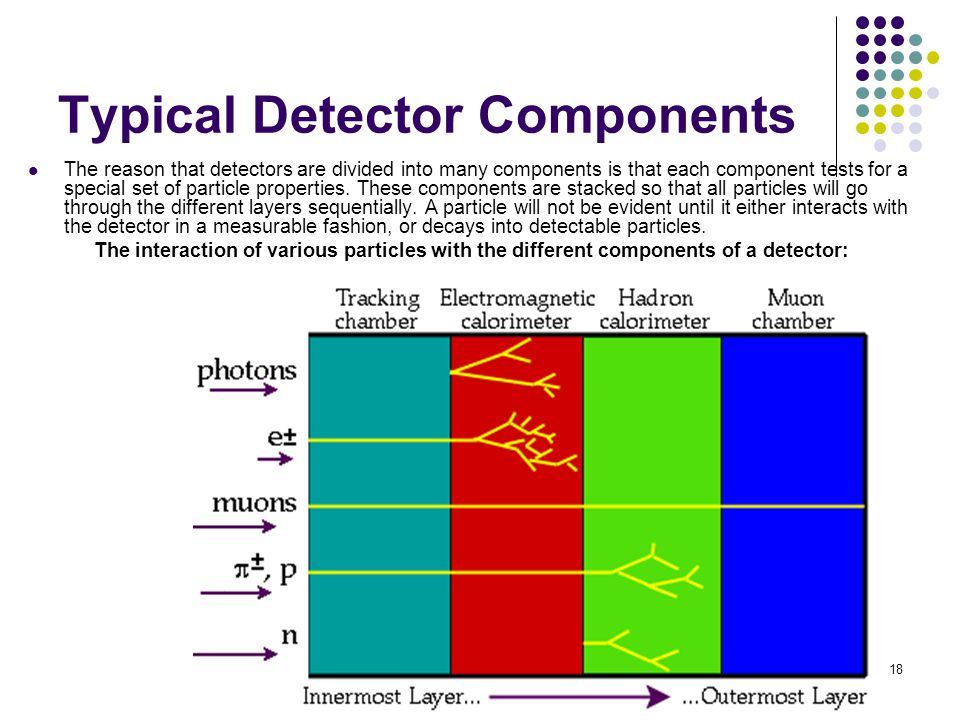 18 Typical Detector Components The reason that detectors are divided into many components is that each component tests for a special set of particle properties.